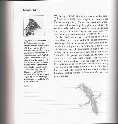 November 3 entry in For the Birds: An Uncommon Guide