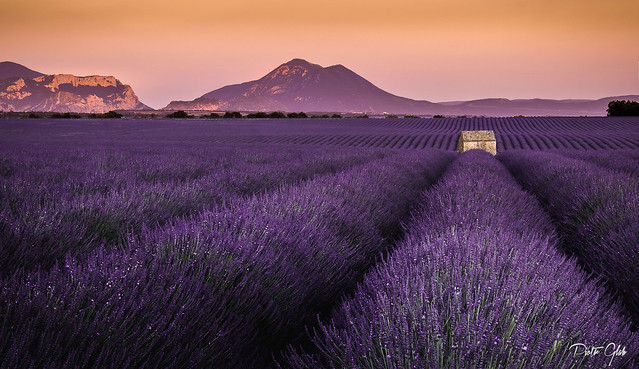 The cliché from Provence