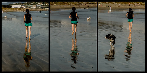 running with the dogs | by glasnevinz