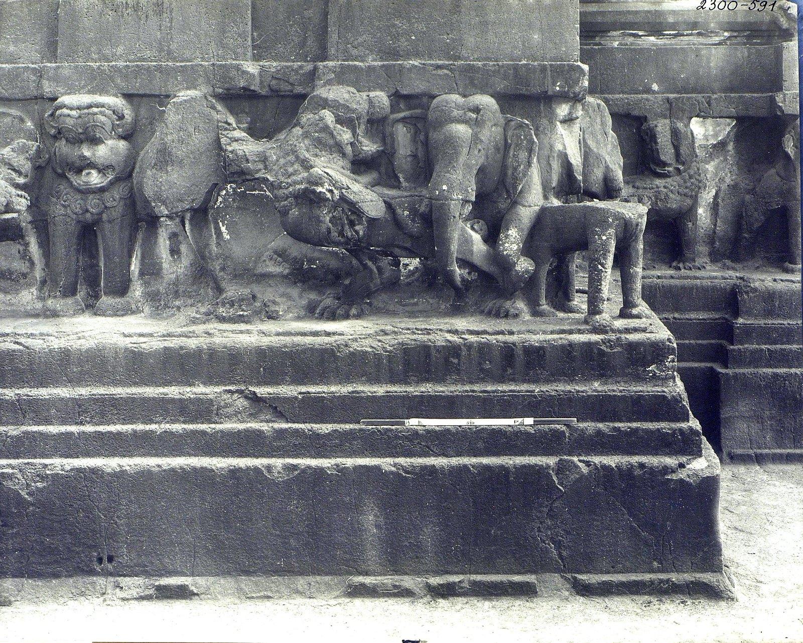 Храм Кайласа в Эллоре (деталь рельефа со слонами и львами) (19)