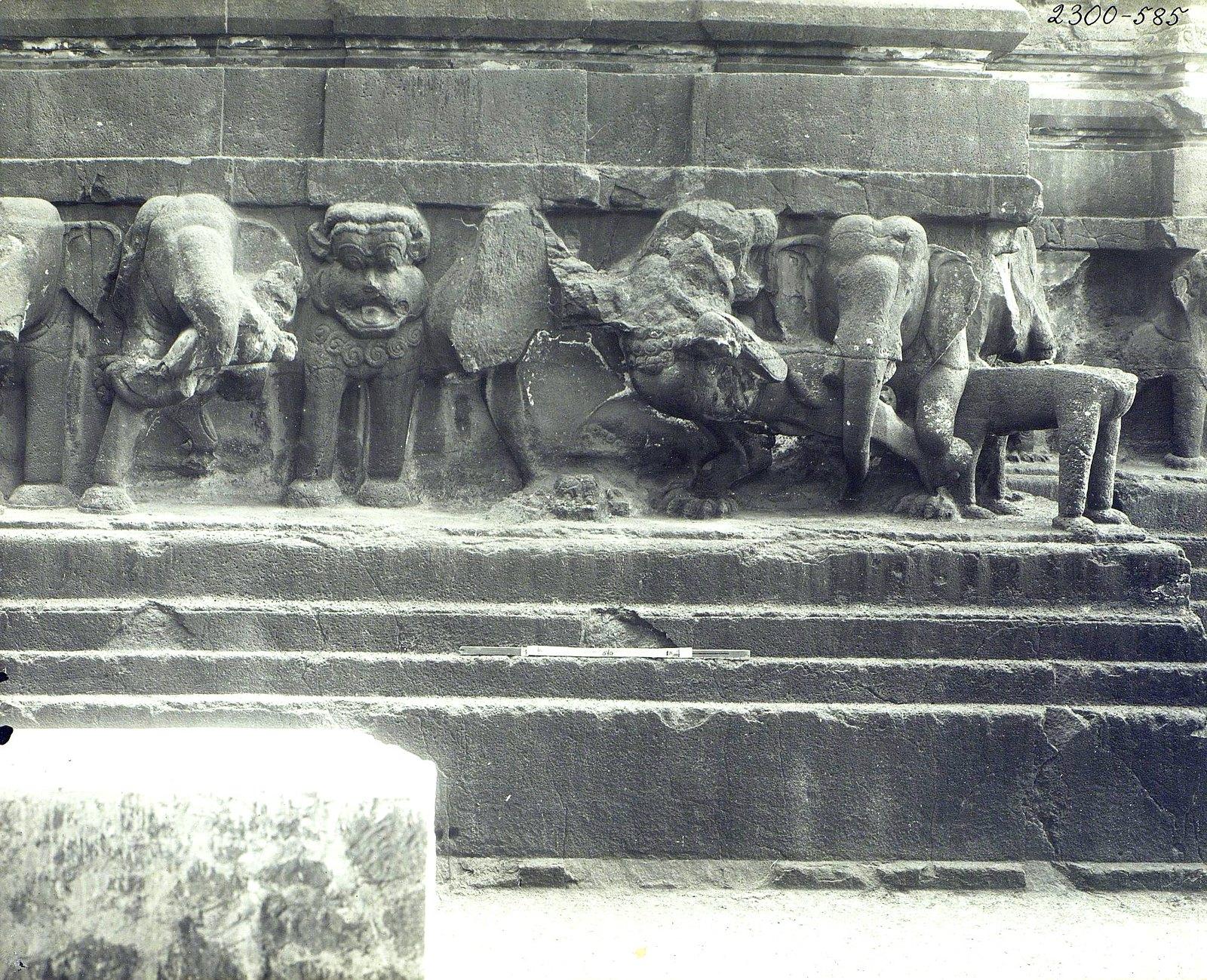 Храм Кайласа в Эллоре (деталь рельефа со слонами и львами) (14)