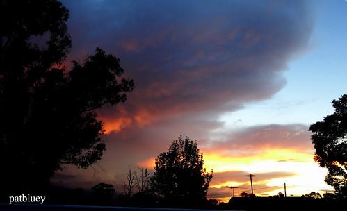 nsw australia mygarden sunset red colour light siloughettes 1001nightsthenew 1001nightsthenewmagiccity 1001nightsmagicwindow mwdivisorio2 exquisitesunsets