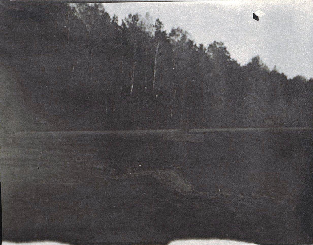 Одинокая могила в лесу1