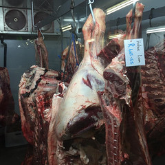 in the Karoo you can buy half a lamb for 40 euros at the gas station