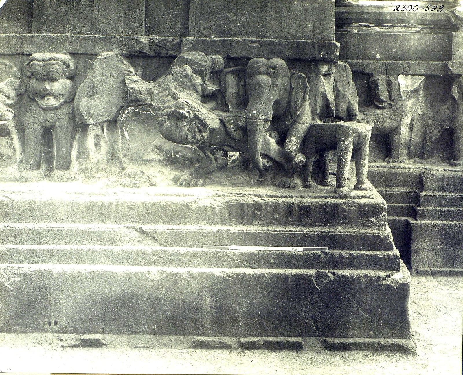 Храм Кайласа в Эллоре (деталь рельефа со слонами и львами) (21)