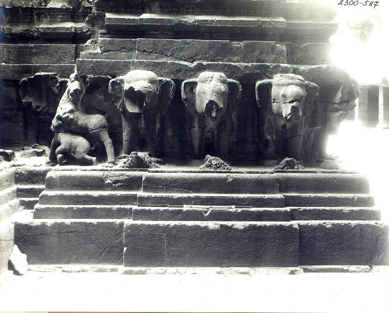 Храм Кайласа в Эллоре (деталь рельефа со слонами и львами) (16)