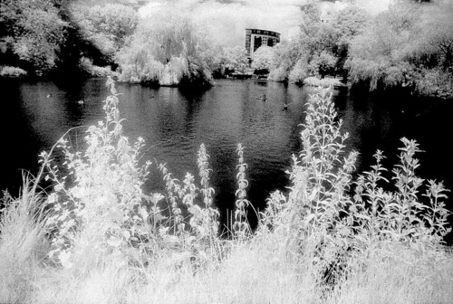 InfraRed Test 03 | by pentaxpete