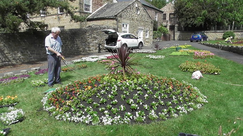 Planting Up Whickham Church Green  June 20 (9)