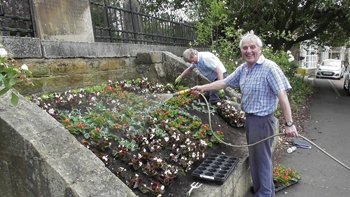 Planting Up Whickham Church Green  June 20 (8)