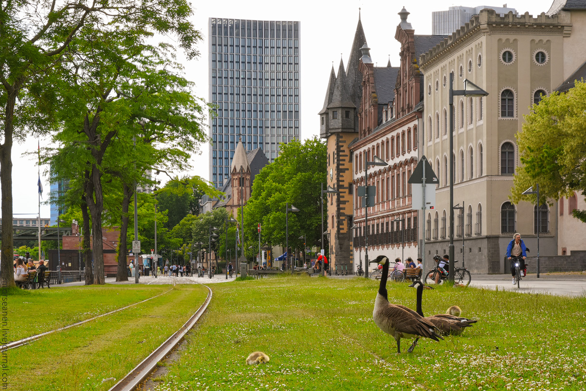 Frankfurt-2020-(35)