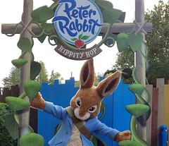 Peter Rabbit in 2019