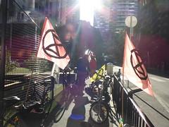 XR flags for Extinction Rebellion Bike Bloc 5 - P1010254