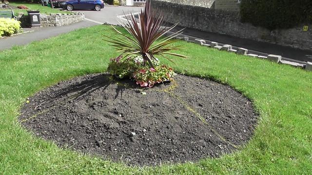 Planting Up Whickham Church Green  June 20 (5)