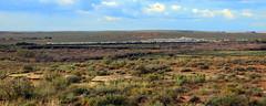 Train Crossing the DEsert - Petrified Forest National Park, Arizona