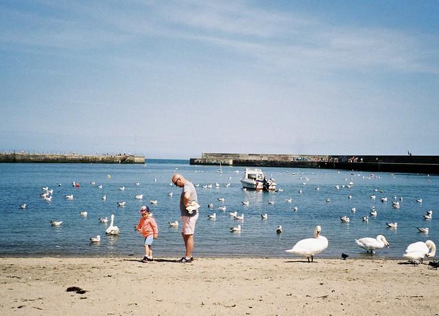 Bray Harbour, Ireland