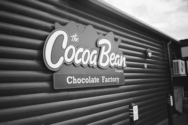 The Cocoa Bean