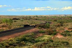 "Railroad across DEsert - Petrified Forest National Park"", ""national park"", Arizona"