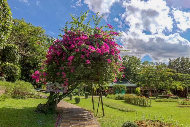 Sankampaeng Hot Spring (121 sur 155)