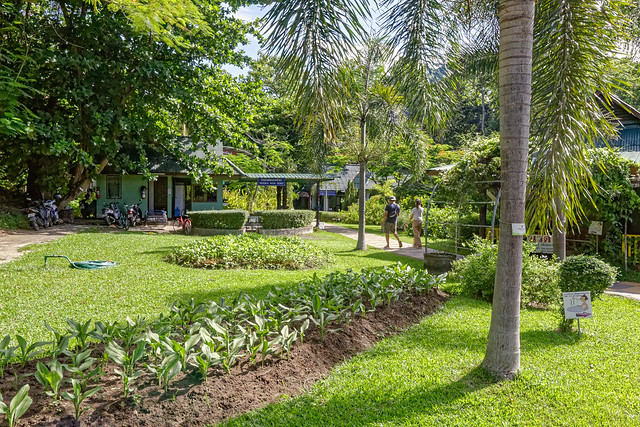 Sankampaeng Hot Spring (115 sur 155)