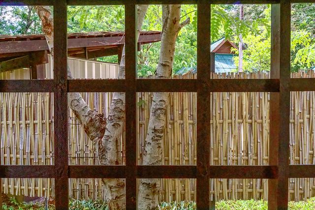 Sankampaeng Hot Spring (106 sur 155)