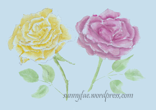 watercolour rose sketches