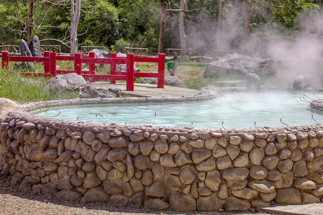Sankampaeng Hot Spring (9 sur 155)
