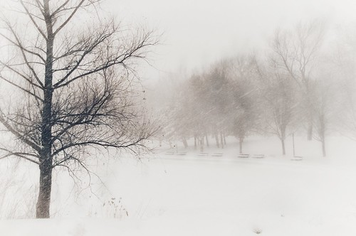 valterb view winter lake snow storm landscape nature parclafontaine montreal nikond90 nikkor elitegalleryaoi bestcapturesaoi aoi