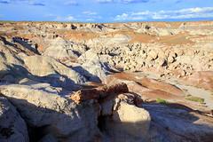Petrified Wood, Rock Formations and Desert Landscape, Blue Mesa Area - Petrified Forest National Park, Arizona