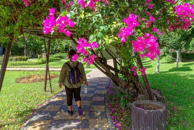 Sankampaeng Hot Spring (118 sur 155)
