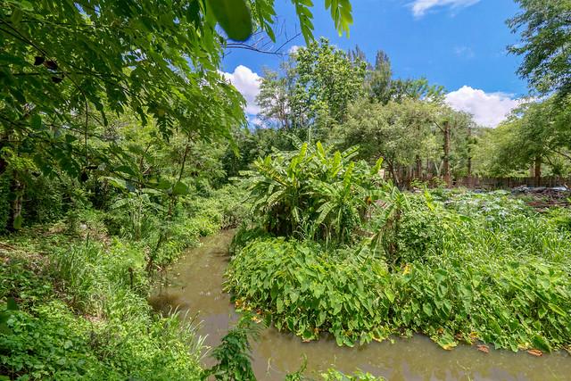 Sankampaeng Hot Spring (104 sur 155)