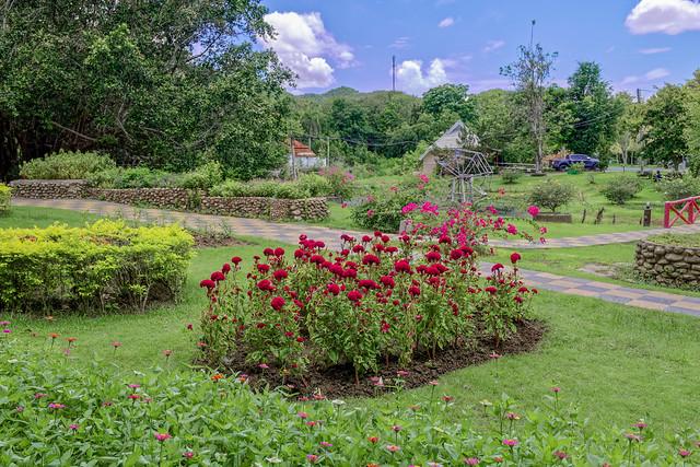Sankampaeng Hot Spring (91 sur 155)