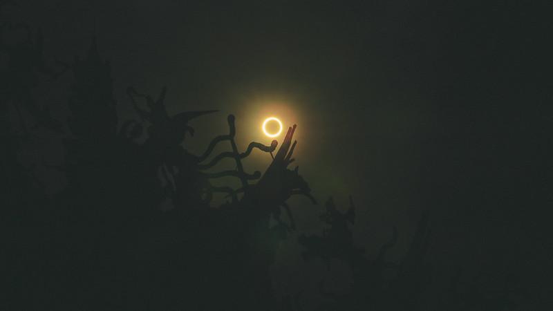 Solar eclipse 日環蝕