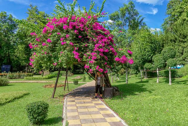 Sankampaeng Hot Spring (117 sur 155)