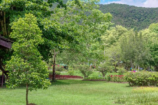 Sankampaeng Hot Spring (33 sur 155)