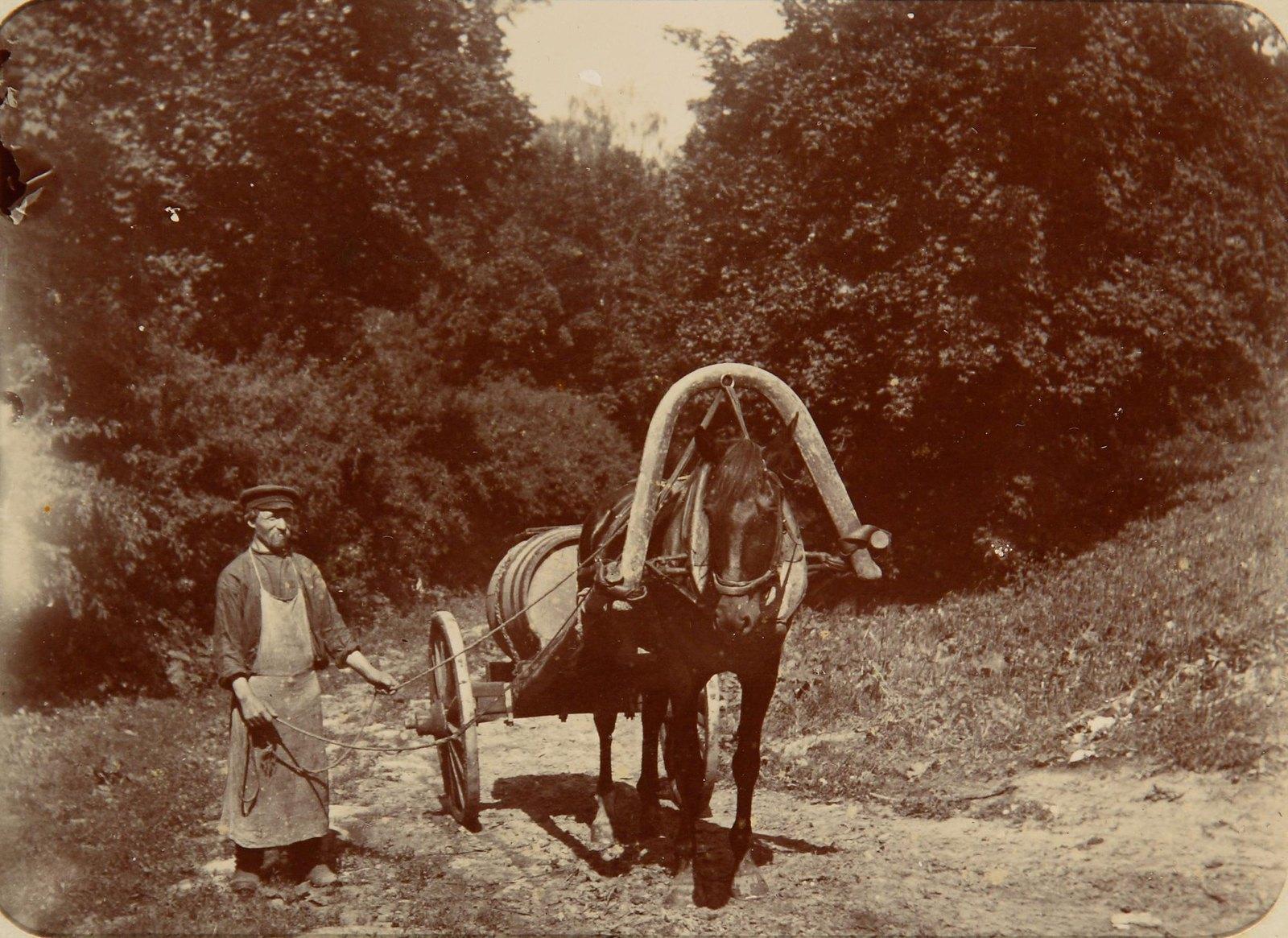 Возница с лошадью и телегой