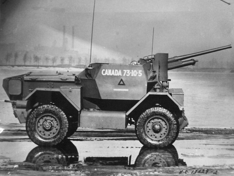 Lynx-2pdr-ljyp-3