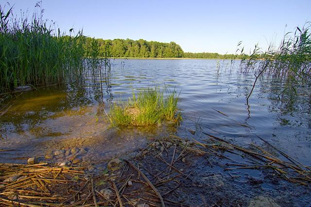 Lake Sasmakas (known as Valdemārpils lake , Ārlavas lake)