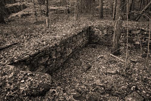landscape newengland rhodeisland bw blackandwhite canon7d autumn autumnfoliage dark emotive monochrome moody melancholy photoworkshop risdce
