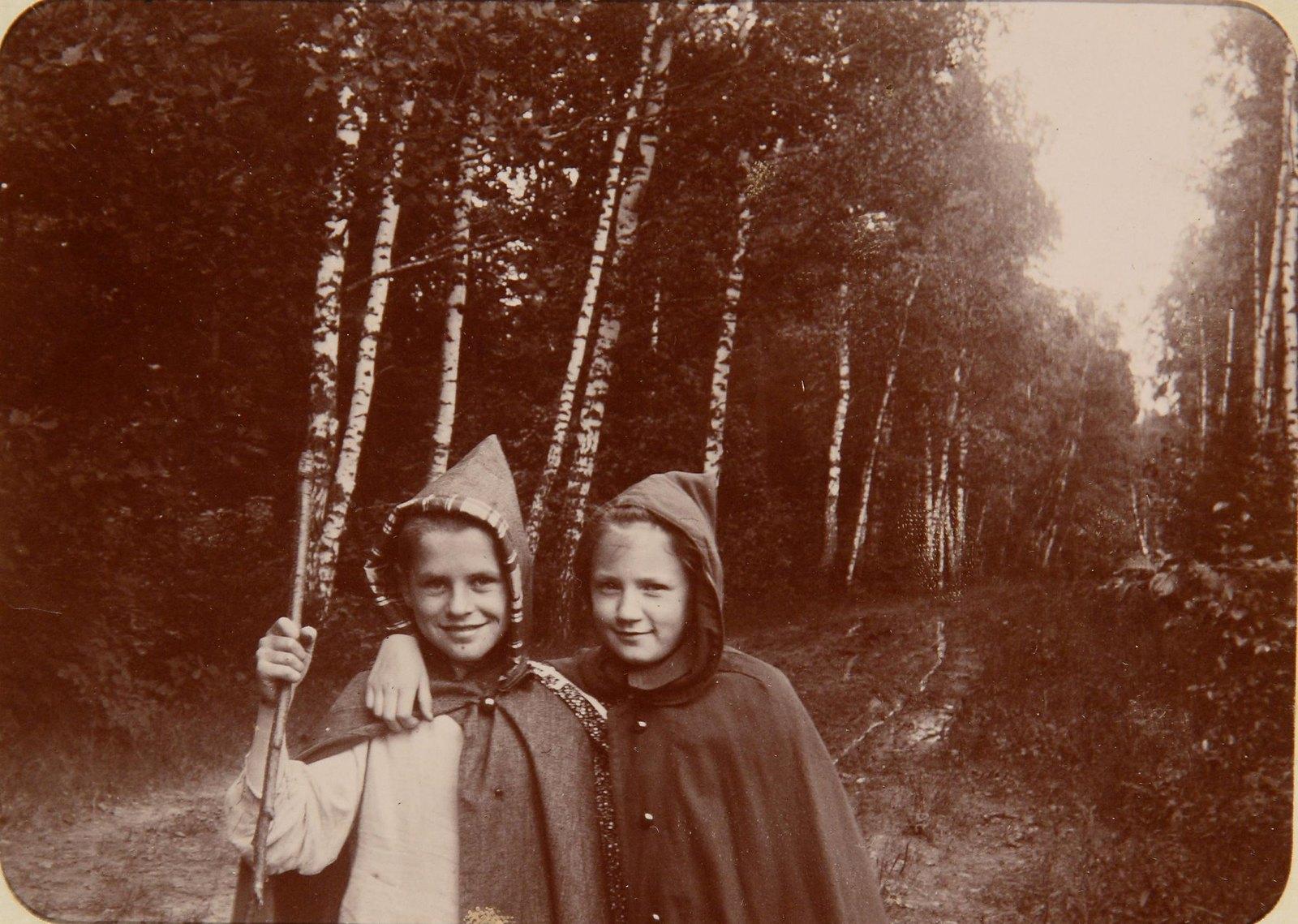 Две девочки на березовой аллее