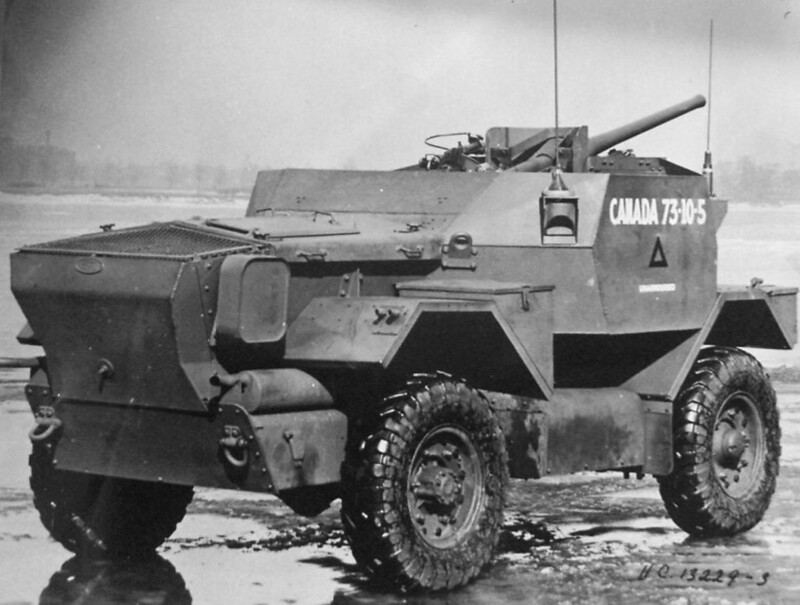 Lynx-2pdr-ljyp-4