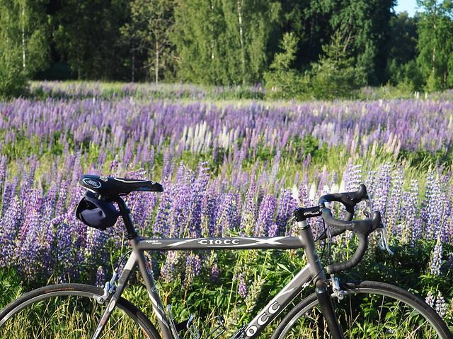 2020 Bike 180: Day 146, June 22