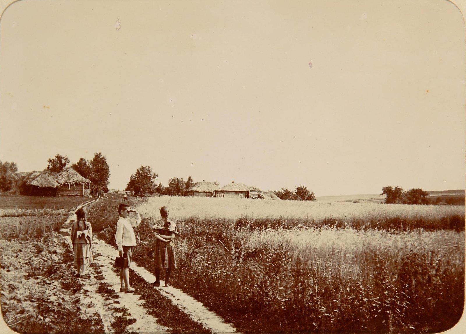 На окраине села