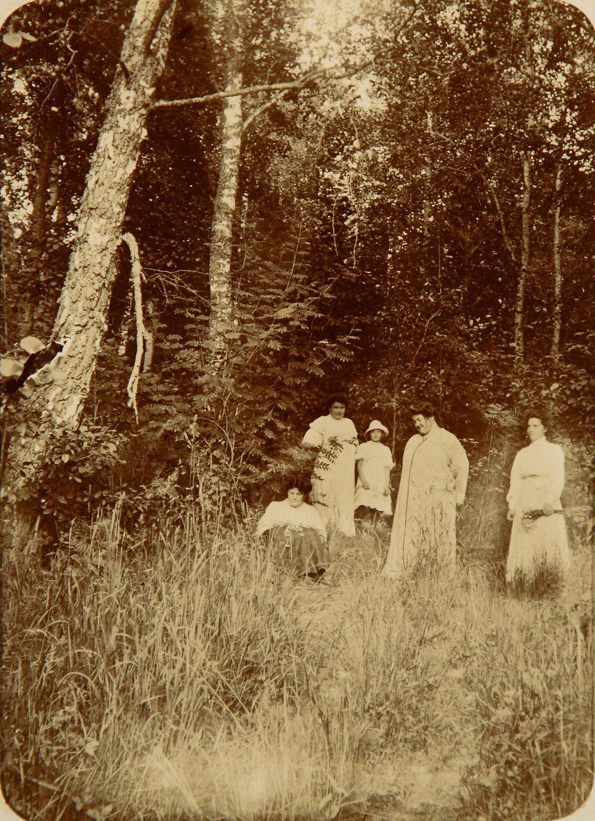 Группа дам на лесной поляне