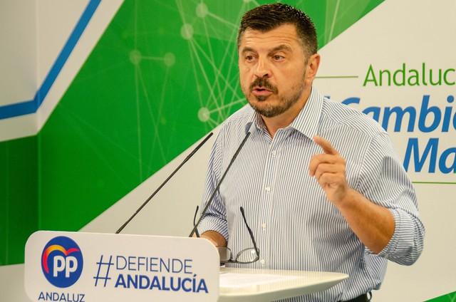 Toni Martín - PP Andalucía