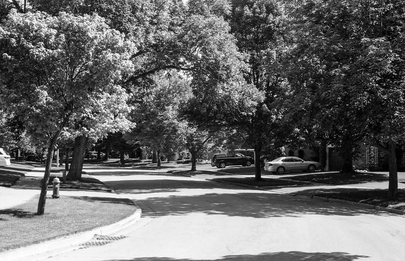 Weldon Avenue