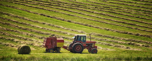 Silage-ing at Stillpoint