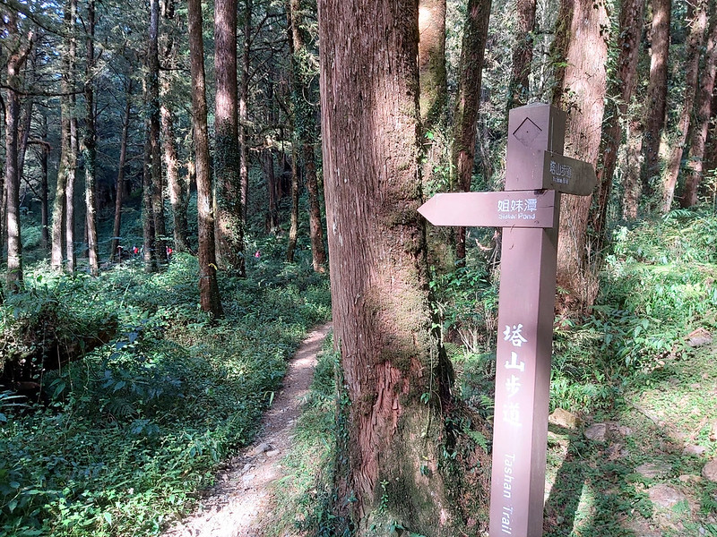 Mt. Data: Sign to Sister Pond in Alishan