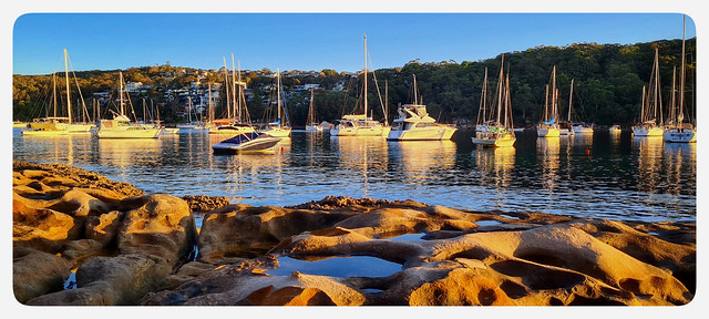 Late afternoon at Fairlight, on Sydney harbour
