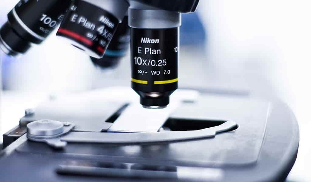 une-nouvelle-faiblesse-dans-les-biofilms-bactériens