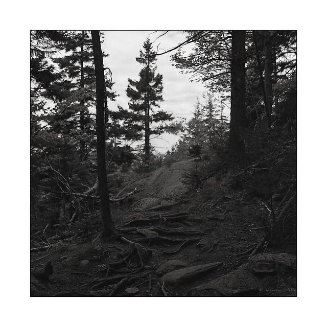 Trail, film